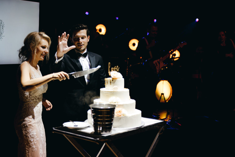 eleganckie wesele w pałacu goetza,, kreatywne światło, wesele w pałącu, fotograf kraków, tort, krojenie tortu, moment decydujący